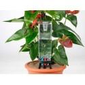 Irrigazione piante da interno faregiardini for Irrigazione piante