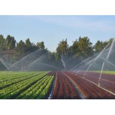 Irrigazione Fuori Terra Faregiardini